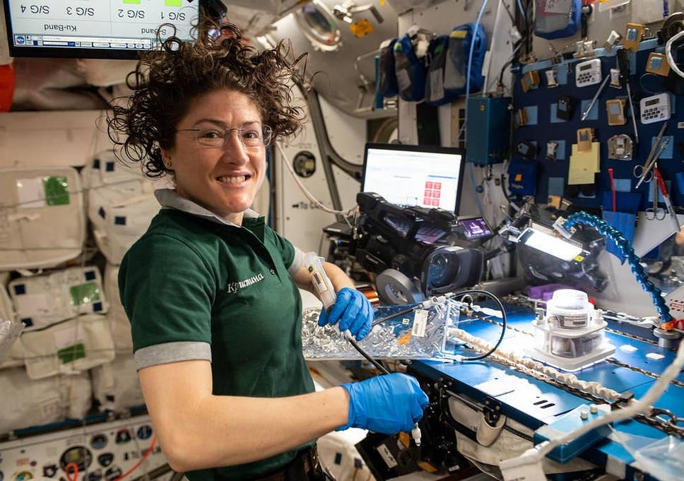 Christina Koch works on a space botany experiment during her time on the ISS