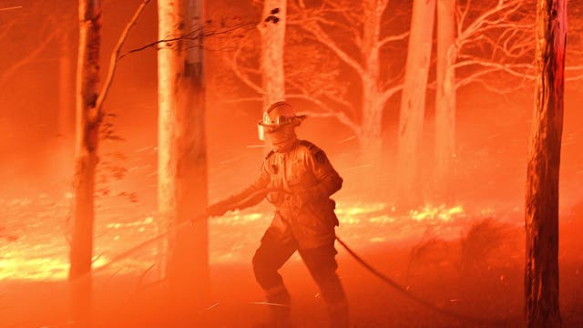 A firefighter hosing down trees and flying embers in an effort to secure nearby houses from bushfires near the town of Nowra in the state of New South Wales on 31 December 2019