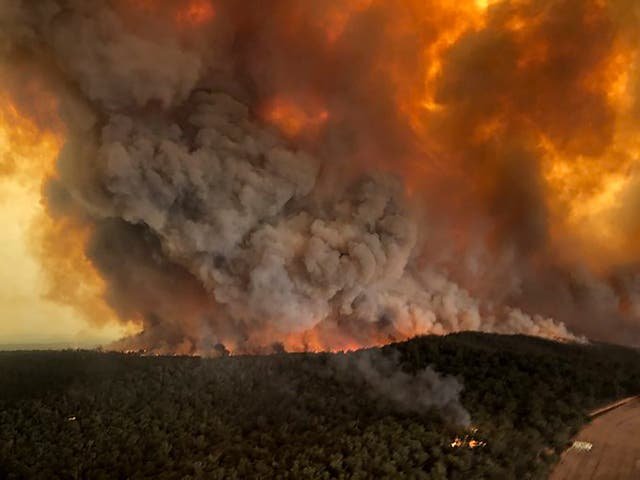 BHP Billiton warned that smoke from wildfires is hitting coal production in Austrialia