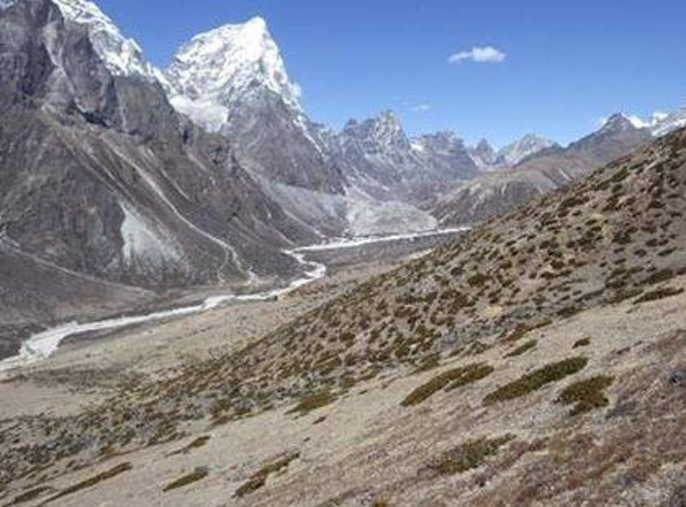 Researchers find small but significant increase in vegetation across four height brackets from 4,150 to 6,000m above sea level