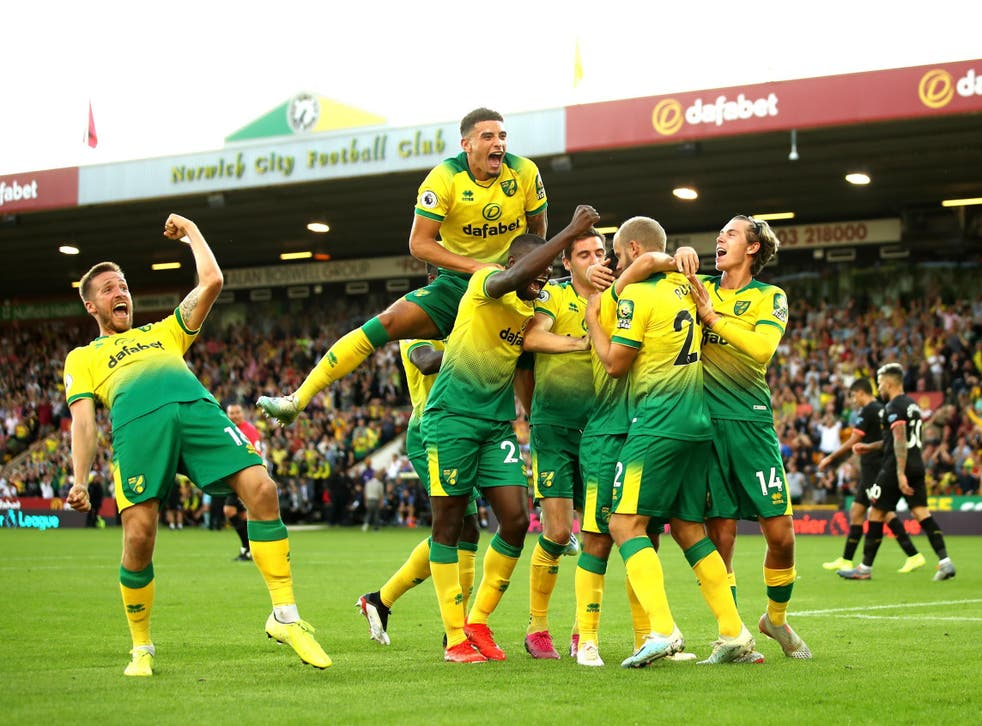 Norwich's players celebrate a goal against Manchester City earlier this season