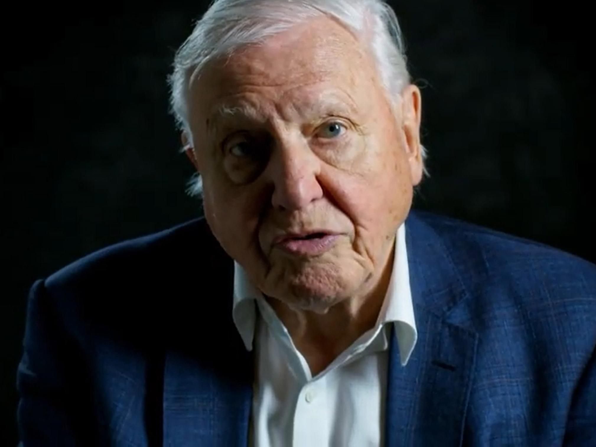 'Humans have overrun the world,' says David Attenborough in new film