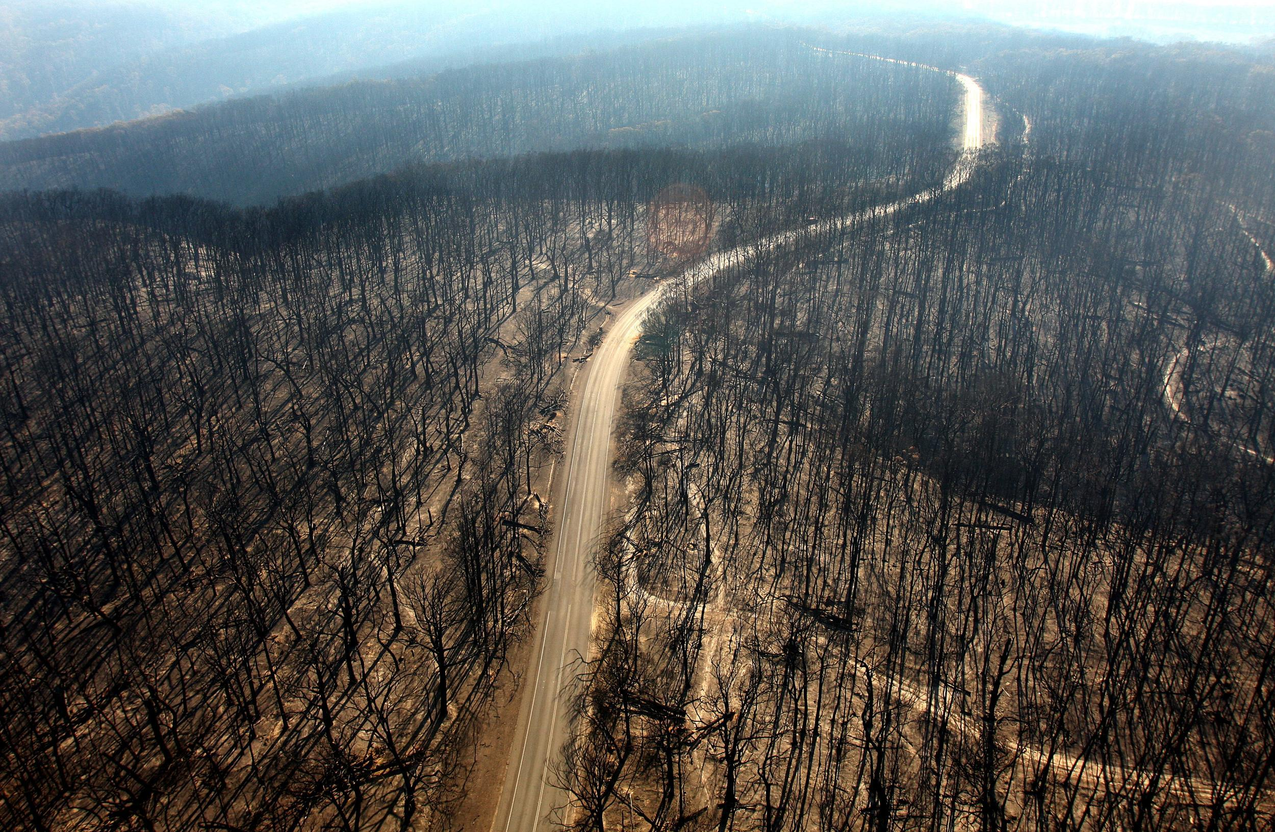 Australia wildfires: Mining firm BHP complains smoke is slowing down coal production