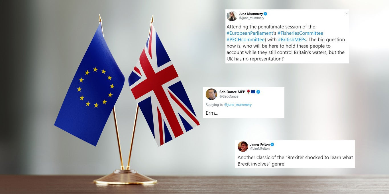 Brexit Party MEP fails to notice the irony after asking 'who will now hold the EU to account?'