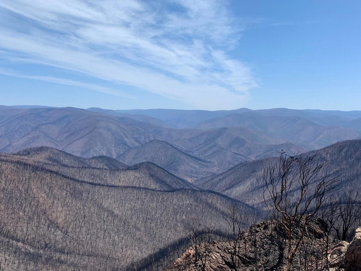 Australia wildfires: Devastating photo shows extent of damage