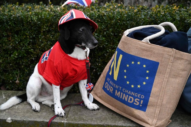 Paddy from Bournemouth wears Union colours as he sits next to an EU flag decorated bag in Parliament Square