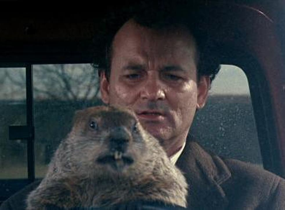 Bill Murray gets more screen time than Punxsutawney Phil in 'Groundhog Day'