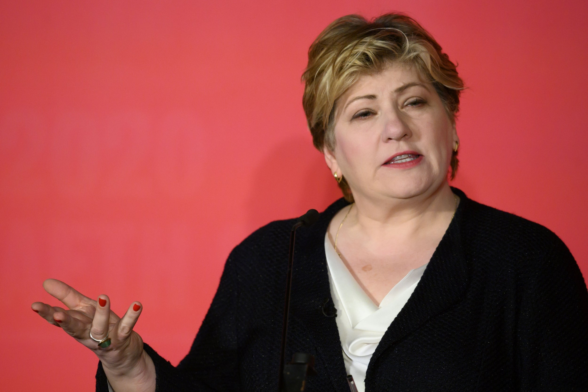 Labour leadership: Emily Thornberry tells members to 'get on with it' and nominate her