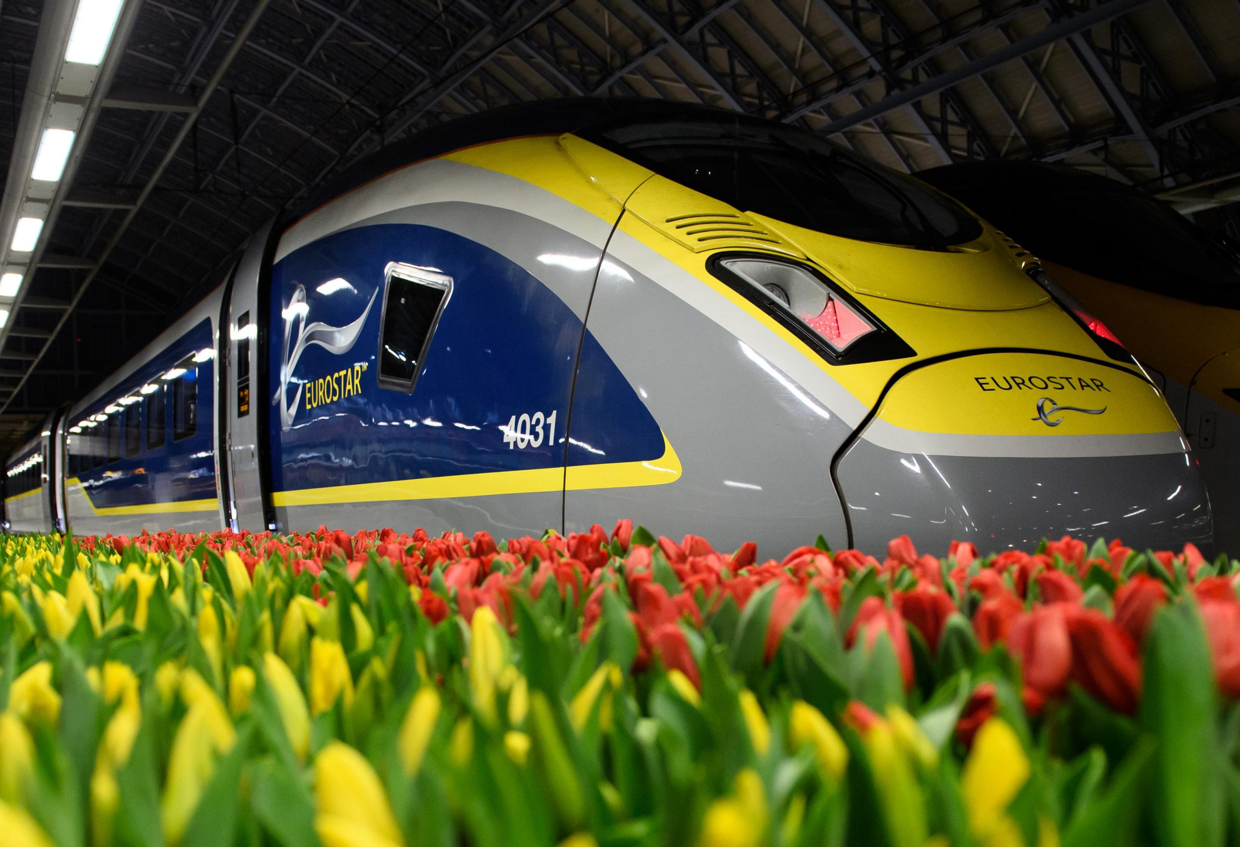 Amsterdam to London Eurostar - LIVE: What it's like onboard the first direct Netherlands-UK train service