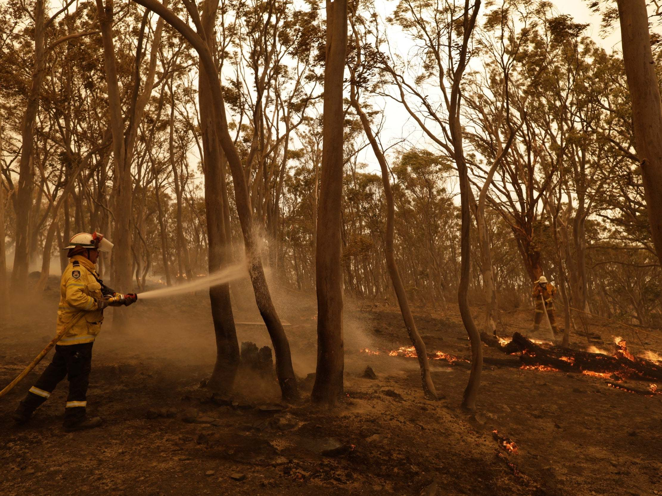 Bushfires in fire-stricken Australian state contained for first time in months