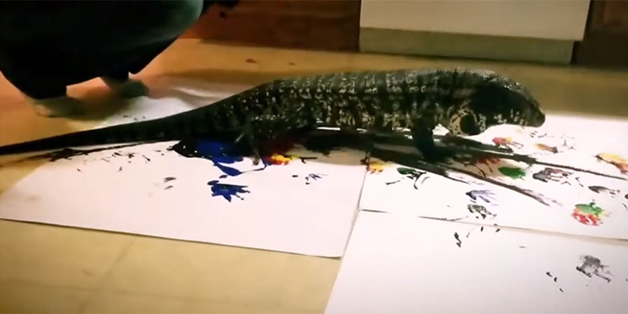 This painting lizard is selling his artwork to raise money for the Australian fire fund