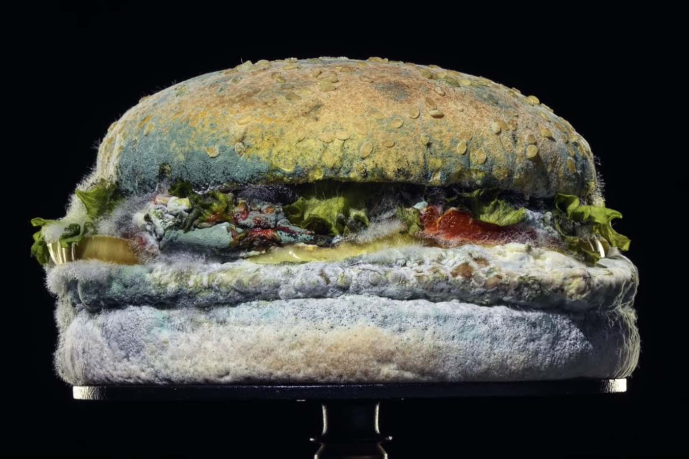 Burger King unveils mouldy whopper in bizarre new ad