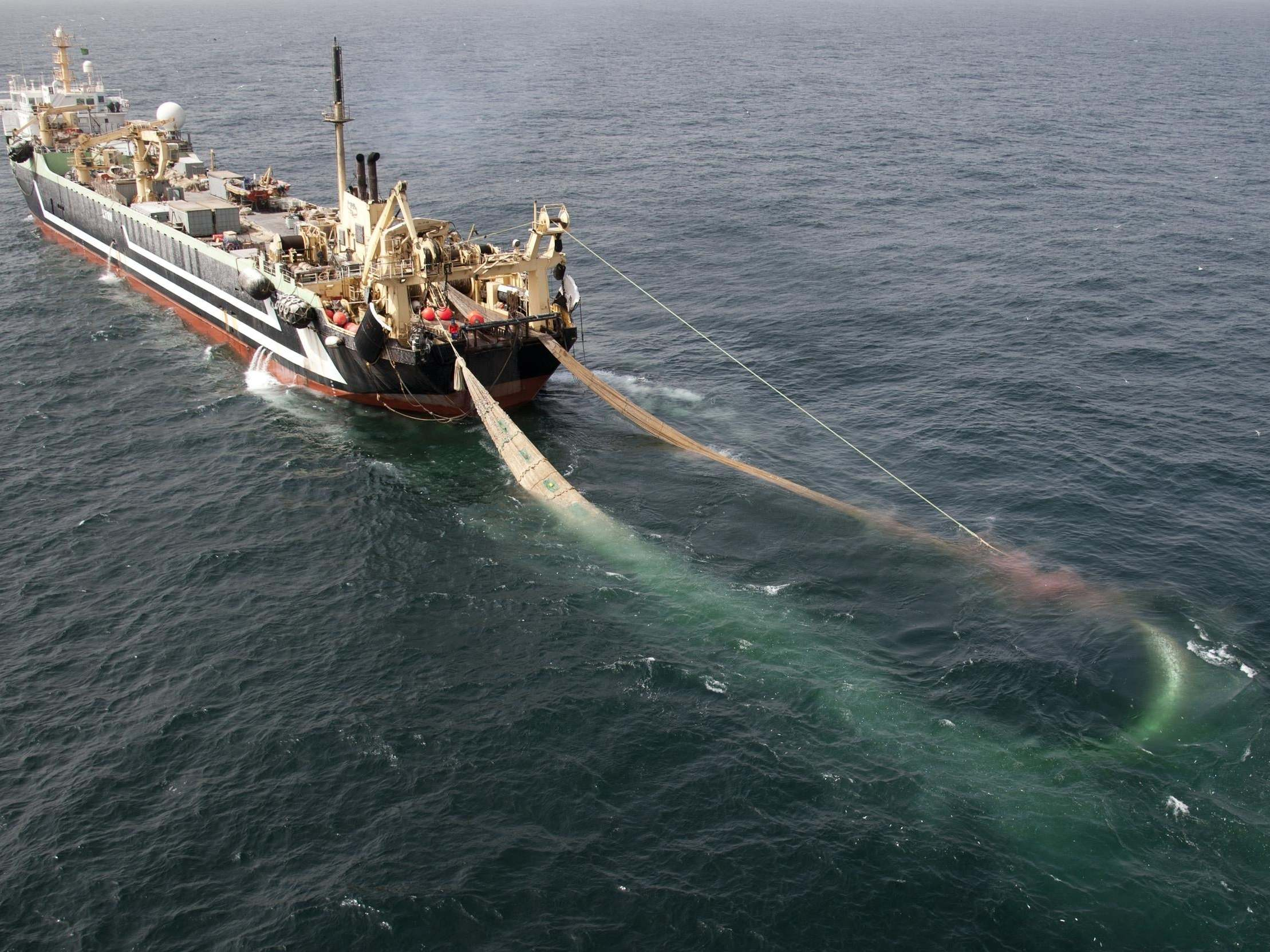 'Supertrawlers' use in UK marine protected areas up by over 1,000% in three years