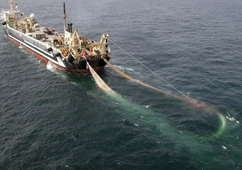vast-european-supertrawlers-use-in-uk-marine-protected-areas-up-by-over-1-000-in-three-years