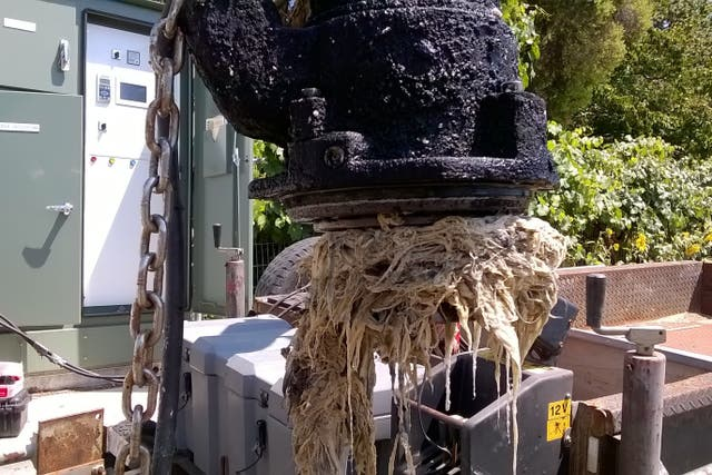 A clogged sewer pump in Australia. People across the world have been urged to stop stockpiling toilet paper amid concerns over shortages as the coronavirus crisis develops