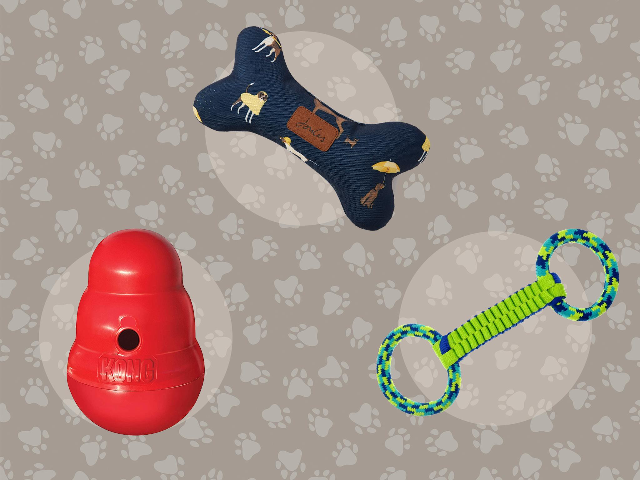 Best dog toys to keep your pooch entertained