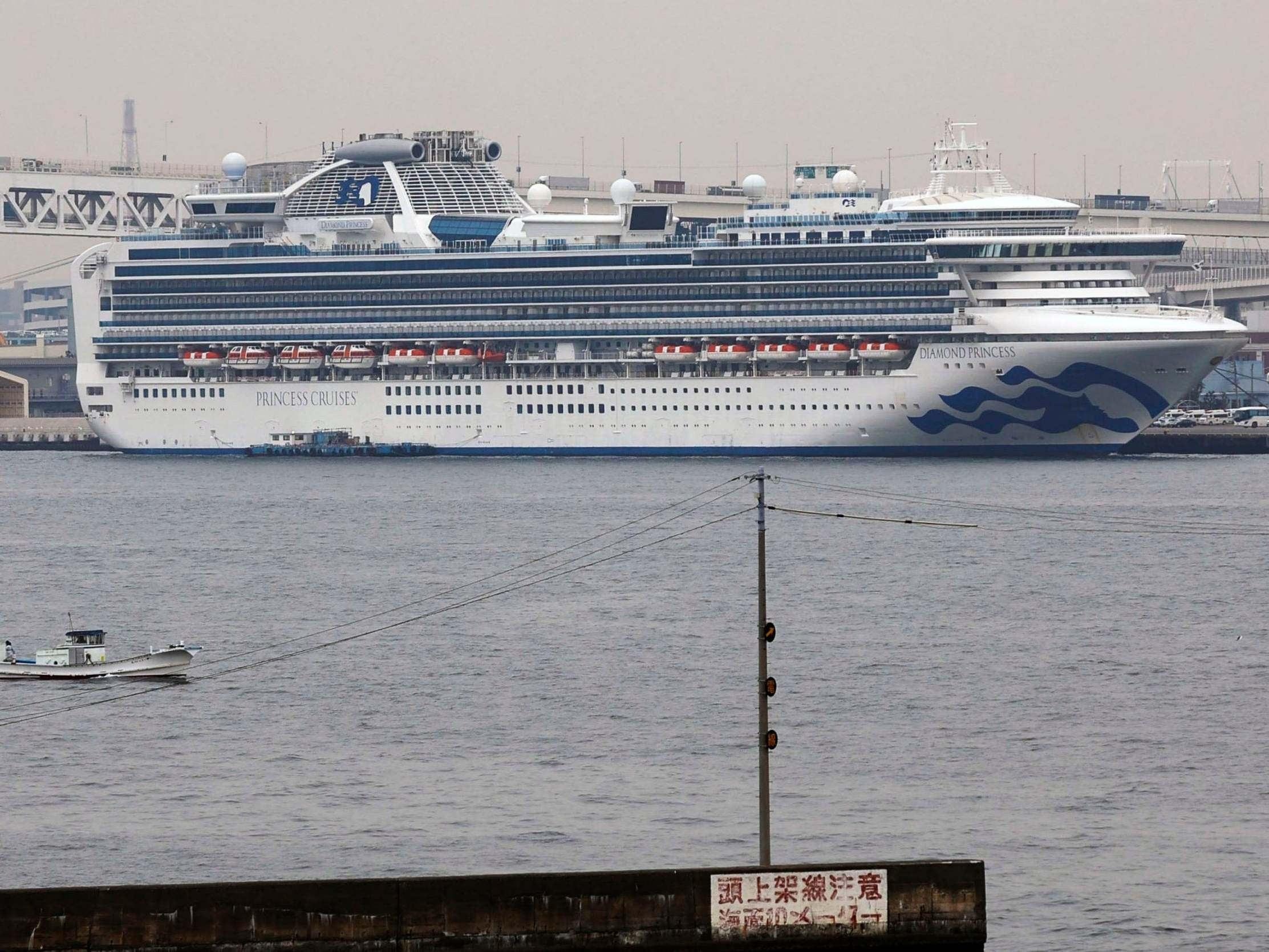 Coronavirus survived in Diamond Princess cruise cabins for 17 days, CDC says