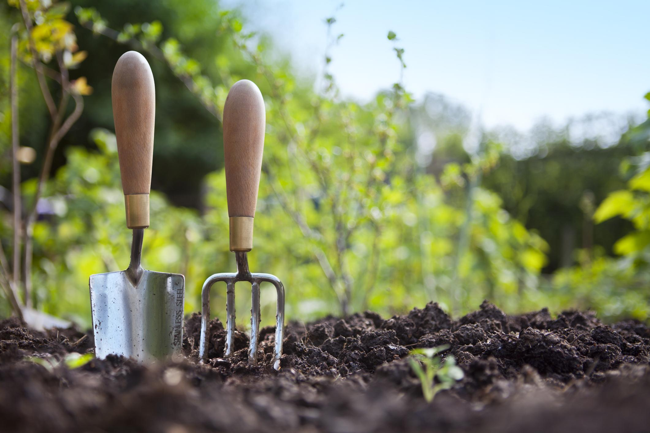 How to make the most of your garden during lockdown | The Independent