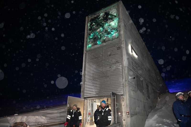 The Doomsday Seed Vault Protecting The World S Crops Amid
