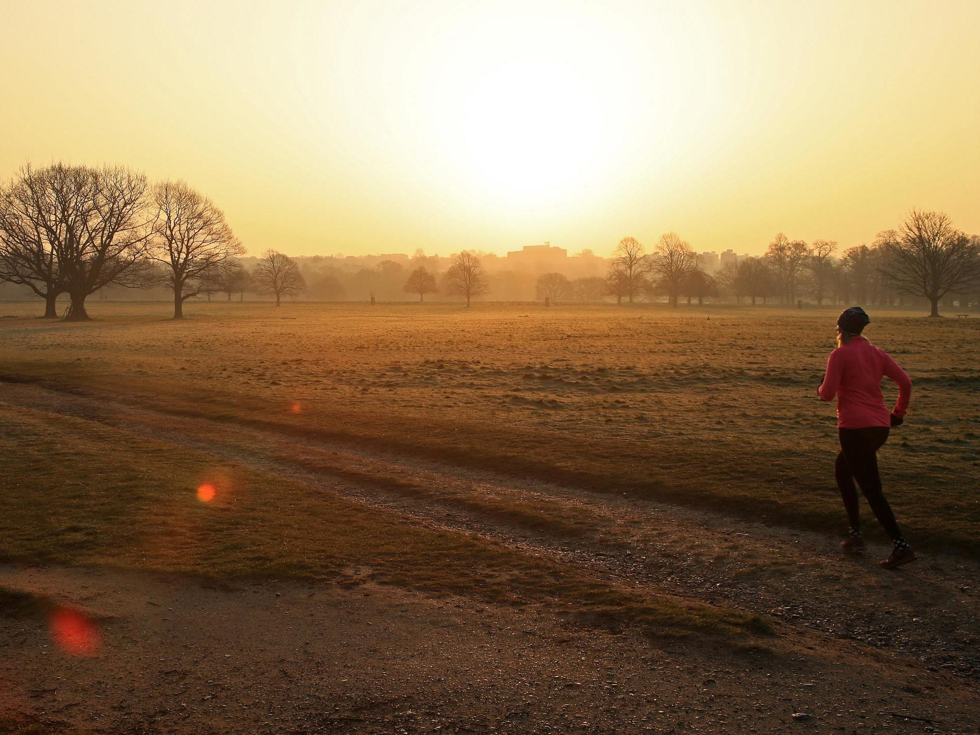 Outdoor exercise could be banned if Britons continue to flout lockdown rules, government warns