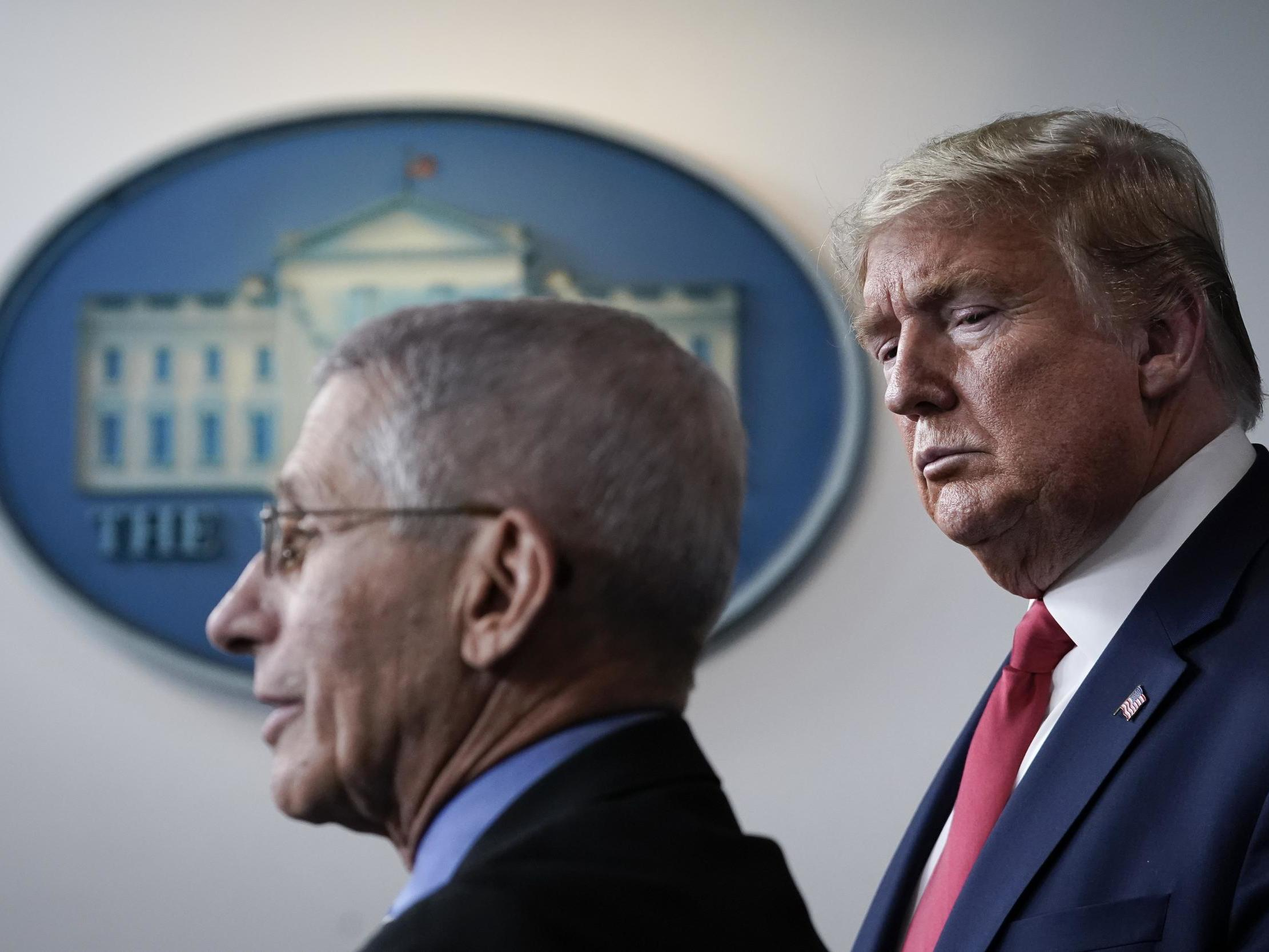 Coronavirus: Trump's top expert Dr Fauci 'can't guarantee' it will be safe to vote in US election thumbnail