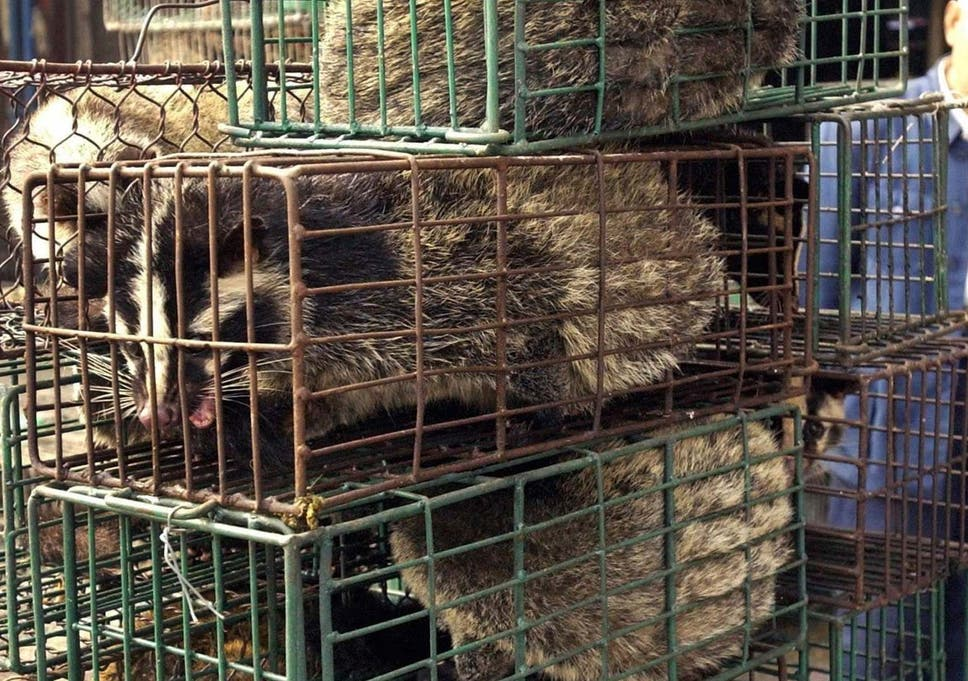 The UN biodiversity chief has urged coutries to ban wildlife markets if the timing is right to avoid future pandemics