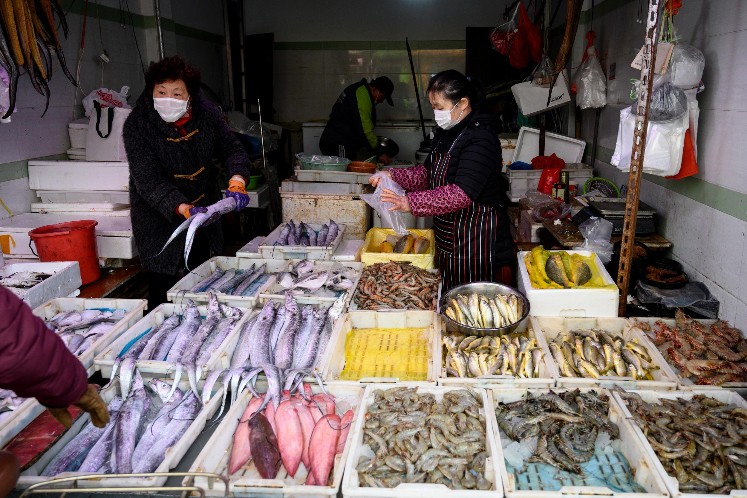 'Life will always find a way': China tries to shut down wildlife trade but markets remain open thumbnail