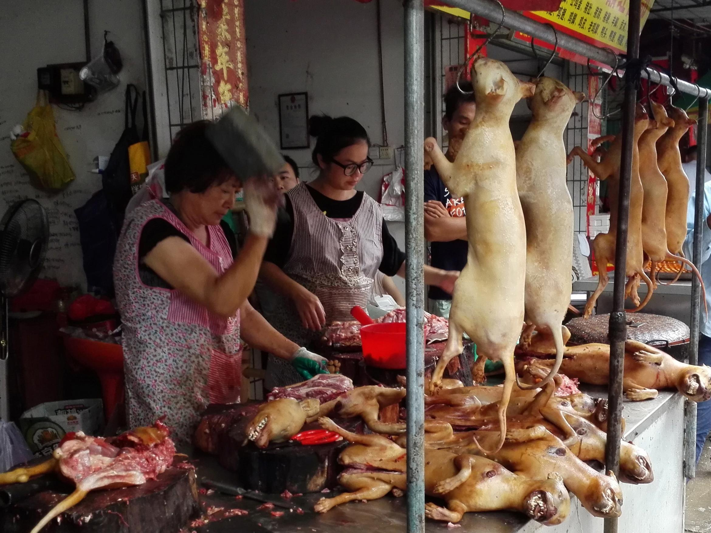 dog meat sale in china