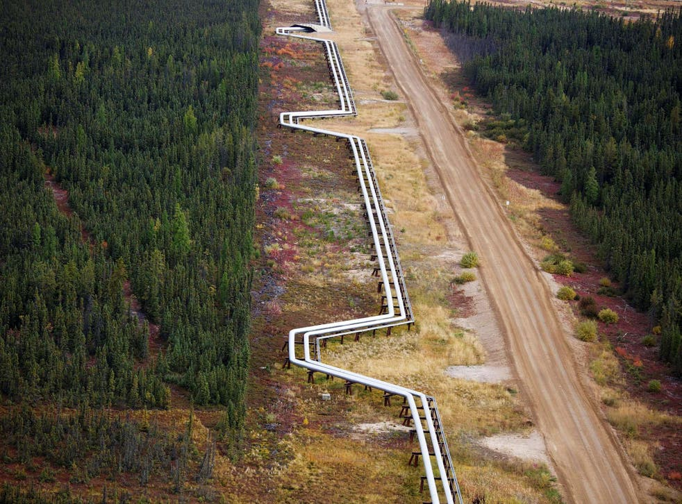 Pipelines carrying steam and oil run near Fort McMurray, Alberta REUTERS/Todd Korol/File Photo