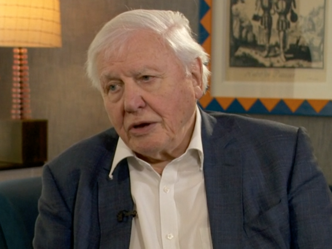 David Attenborough warns 'human beings have overrun the world' as he issues urgent climate plea
