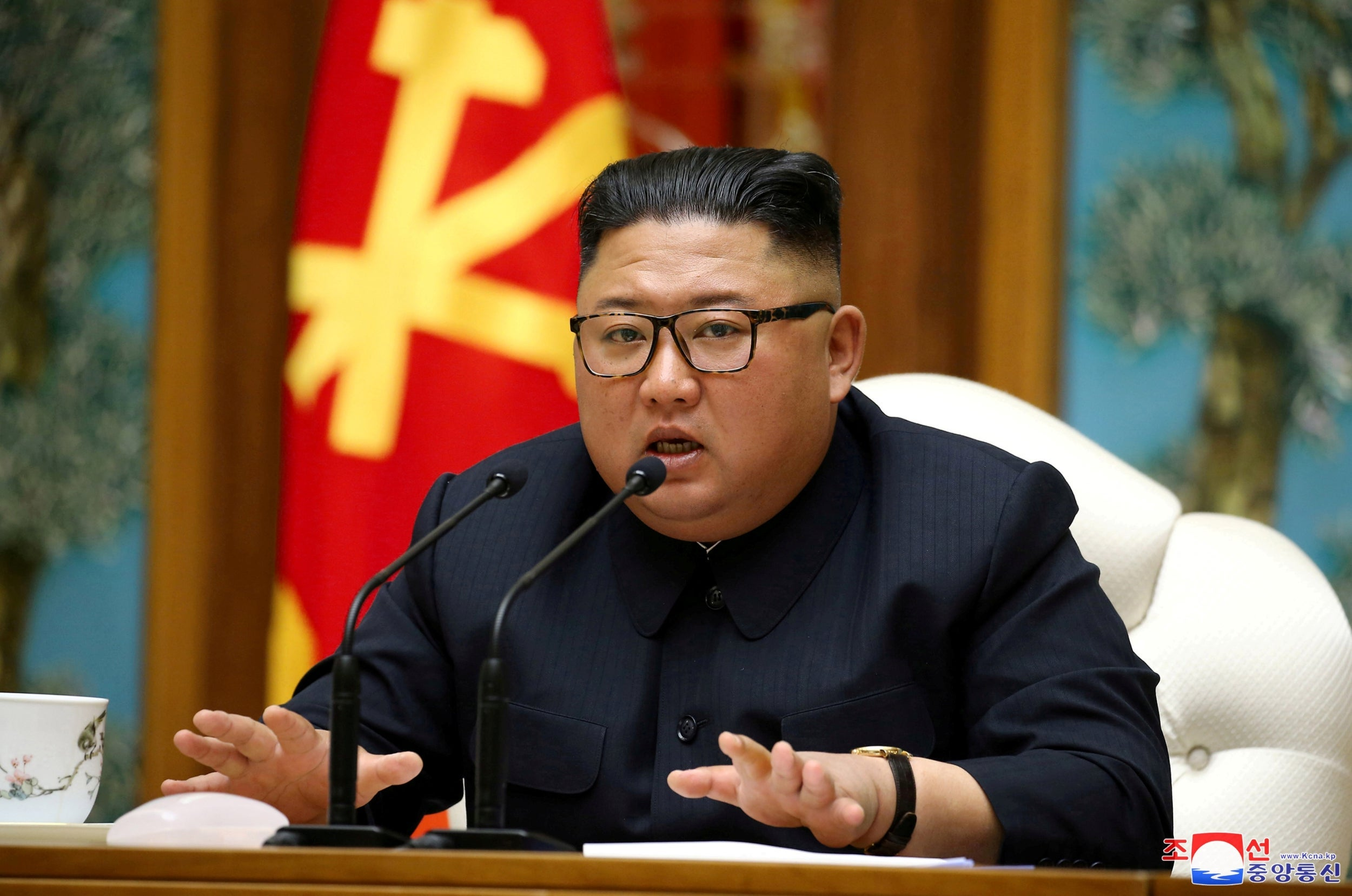 Who would Kim Jong-un's successor be? thumbnail