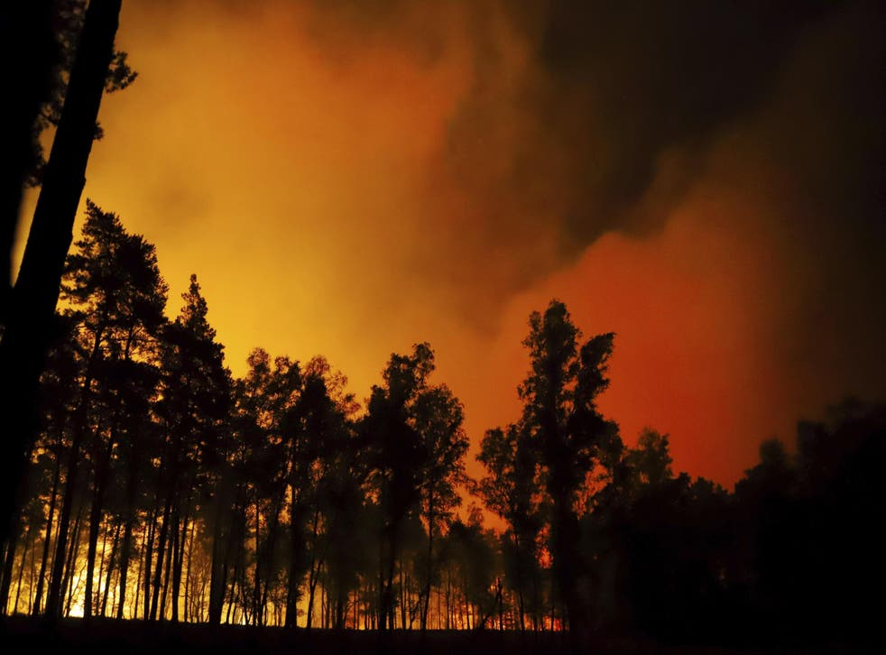 According to the district of Viersen, about 500 firefighters from Germany and the Netherlands are involved in fighting the large fire in the German-Dutch border area