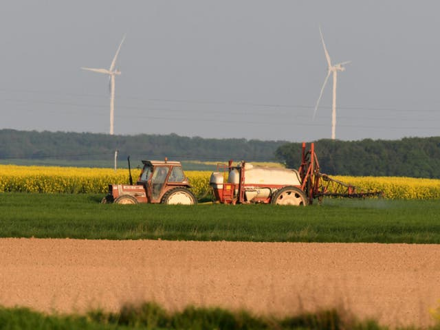 Farmland, which was a sure bet before the lockdown, is set to ascend even higher in value