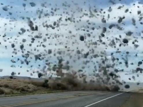 Tumbleweed tornado spotted on Washington highway photo