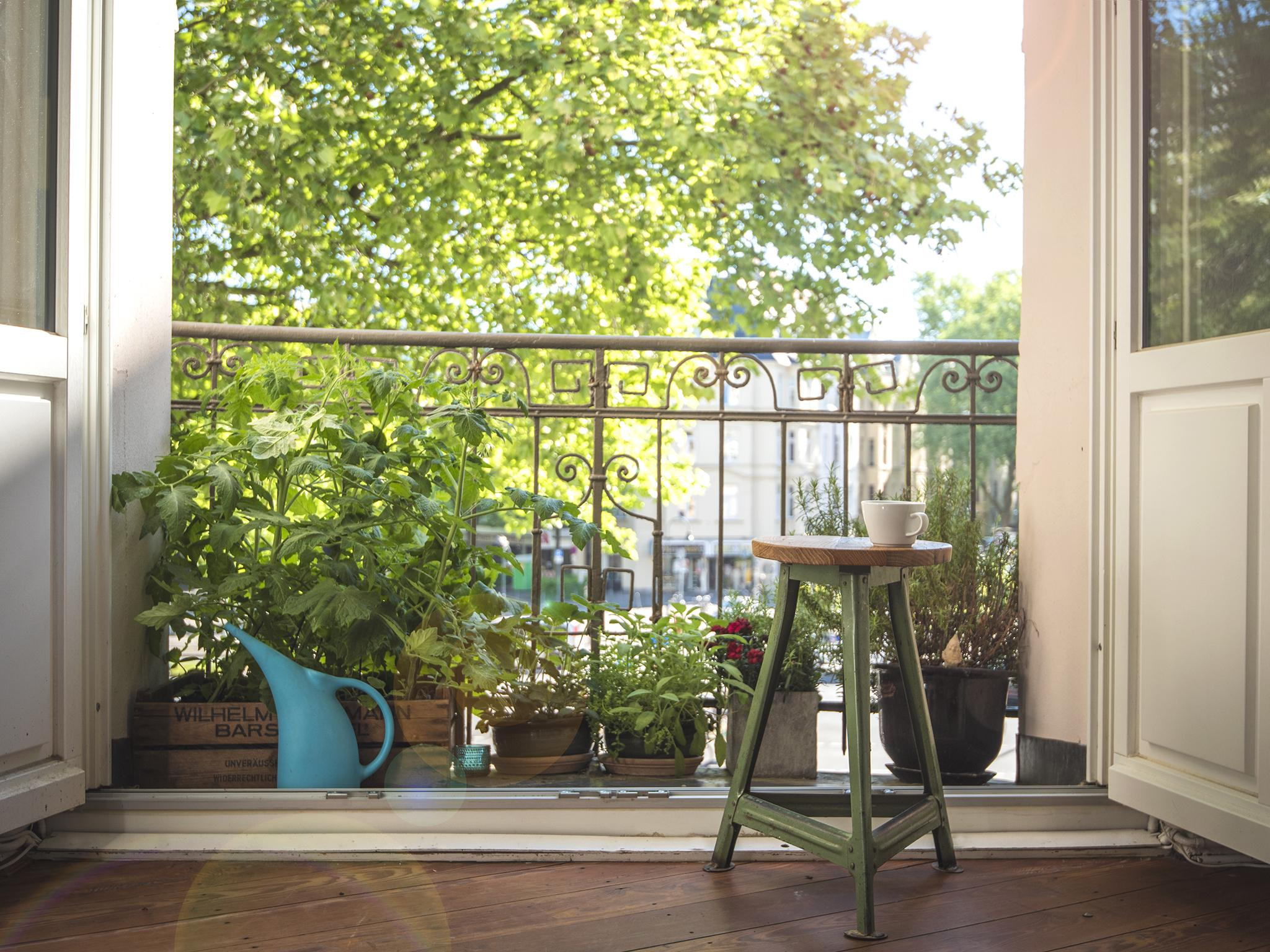Everything you need to start gardening on a balcony or windowsill