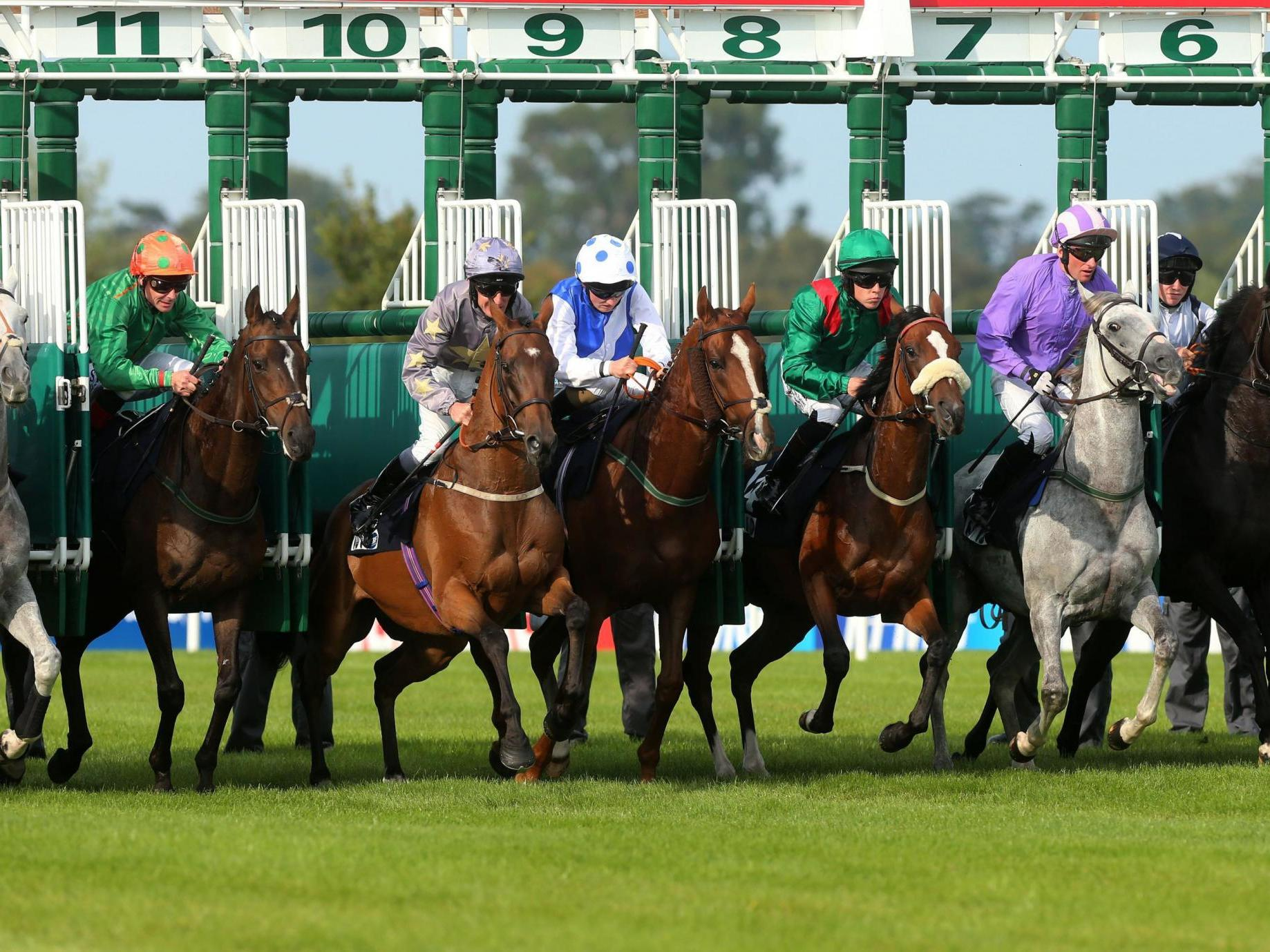 Racing to resume in Ireland behind closed doors next month