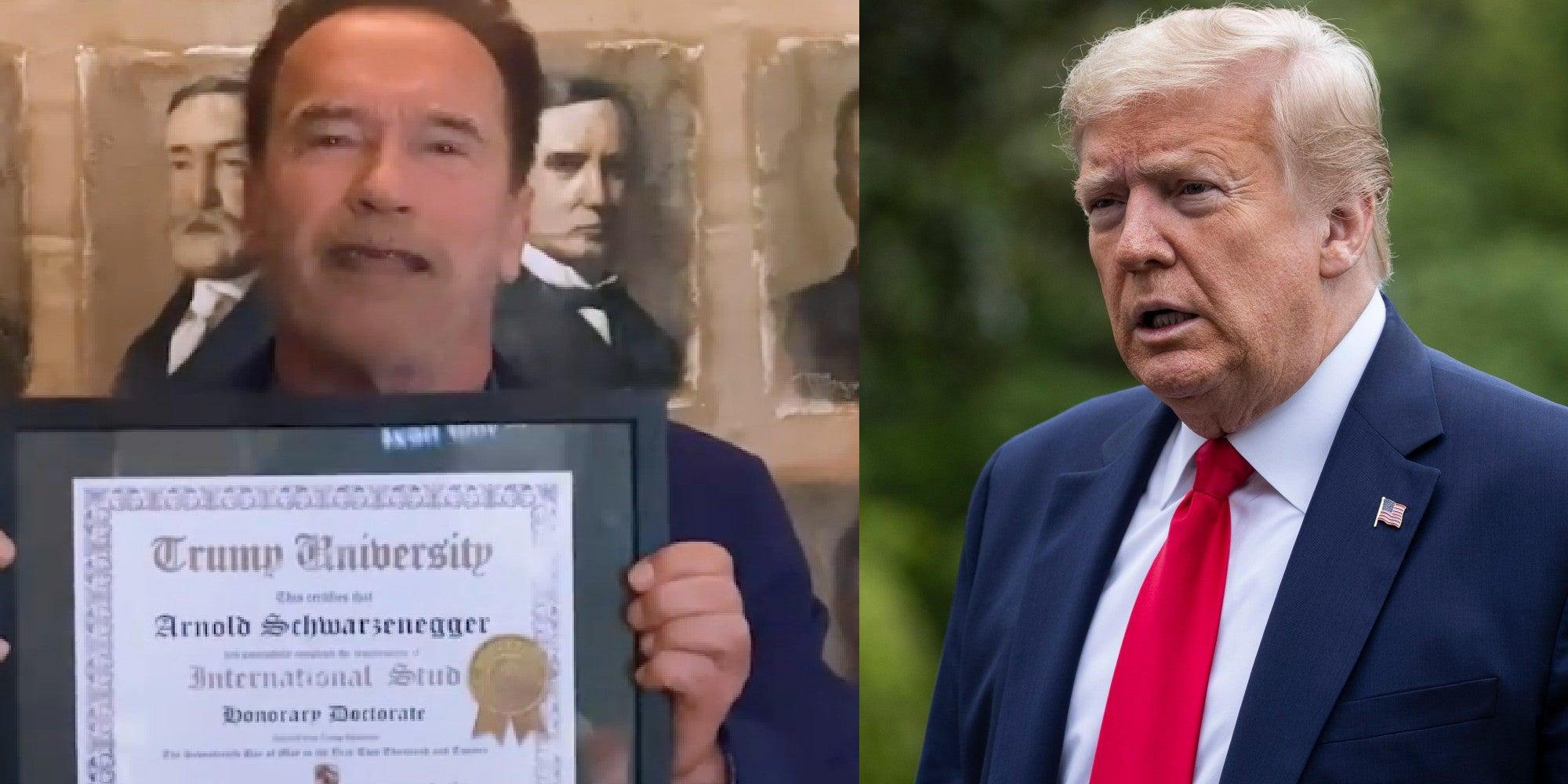 Trump News President S Fake University Mocked By Arnold Schwarzenegger Indy100