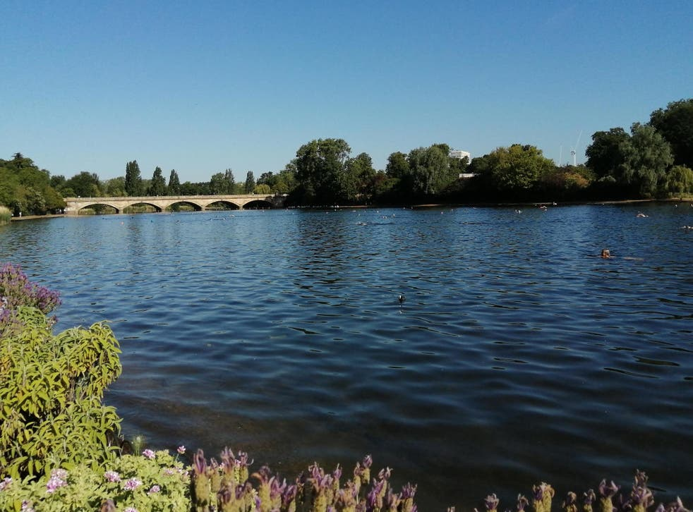 Swimming in the Serpentine can feel as exotic as a trip abroad
