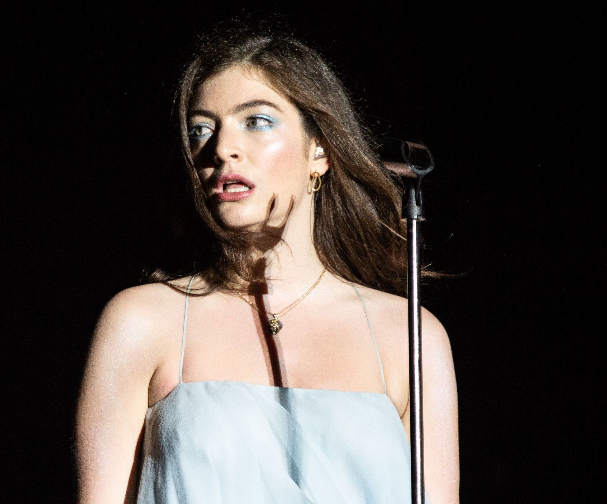 Lorde expresses solidarity with Black Lives Matter movement amid mass protests: 'This ongoing systemic brutality by police is racist'