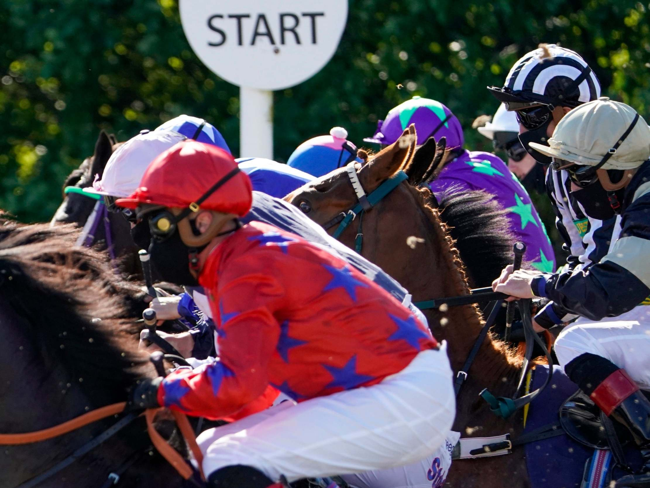 Tragedy mars horse racing's return at Newcastle