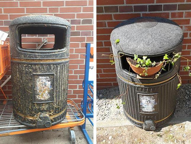 Bin thrown off Sussex pier washes up on German beach and becomes birdhouse thumbnail