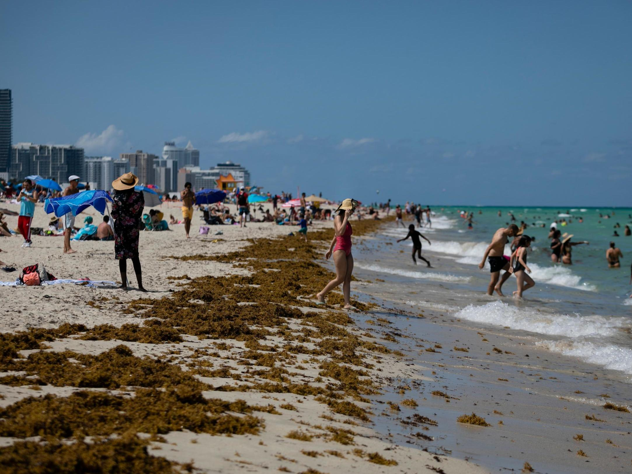 Florida reports record one-day spike in coronavirus cases