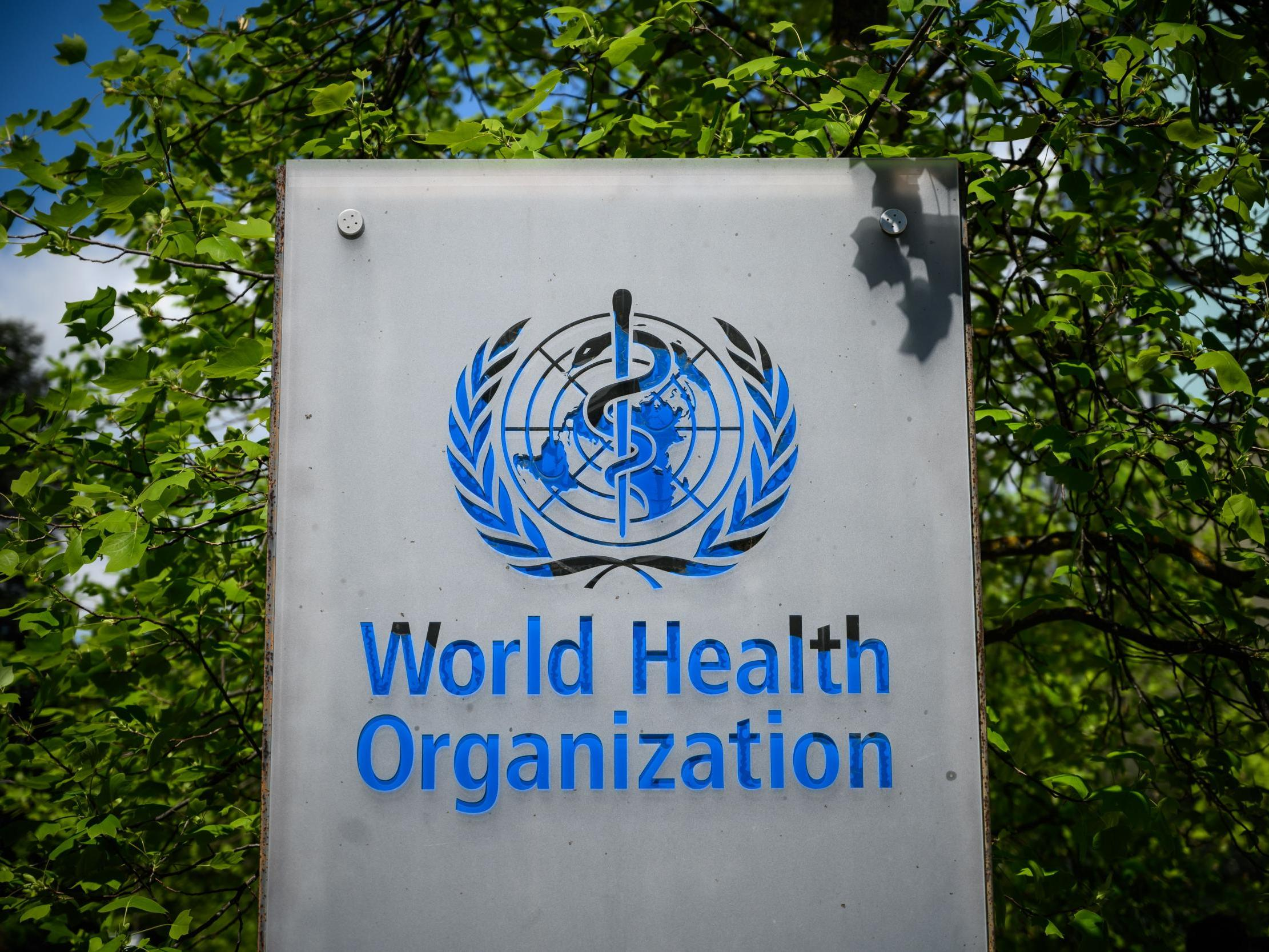 World Health Organisation - latest news breaking stories and