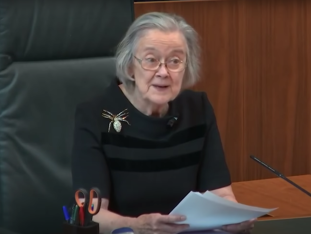 Lady Hale responds to claims spider brooch worn at prorogation ruling had a 'hidden message'