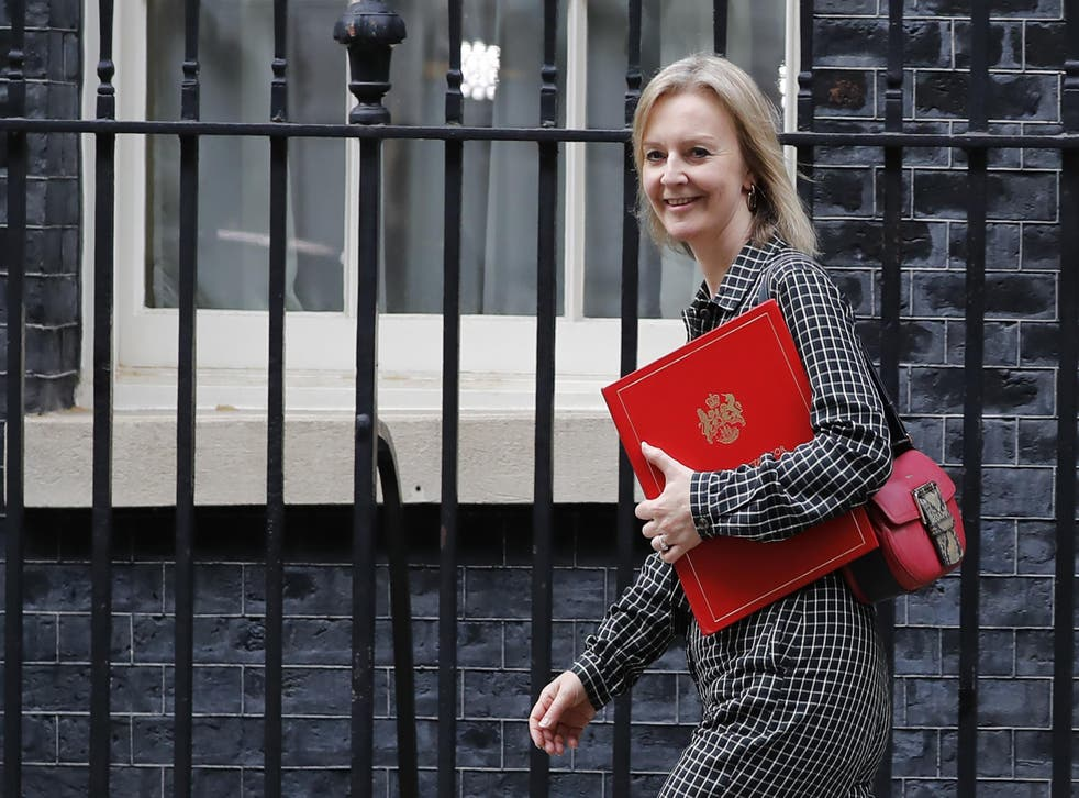 Liz Truss wrote that she had 'key areas of concerns' about the PM's plans for Northern Ireland