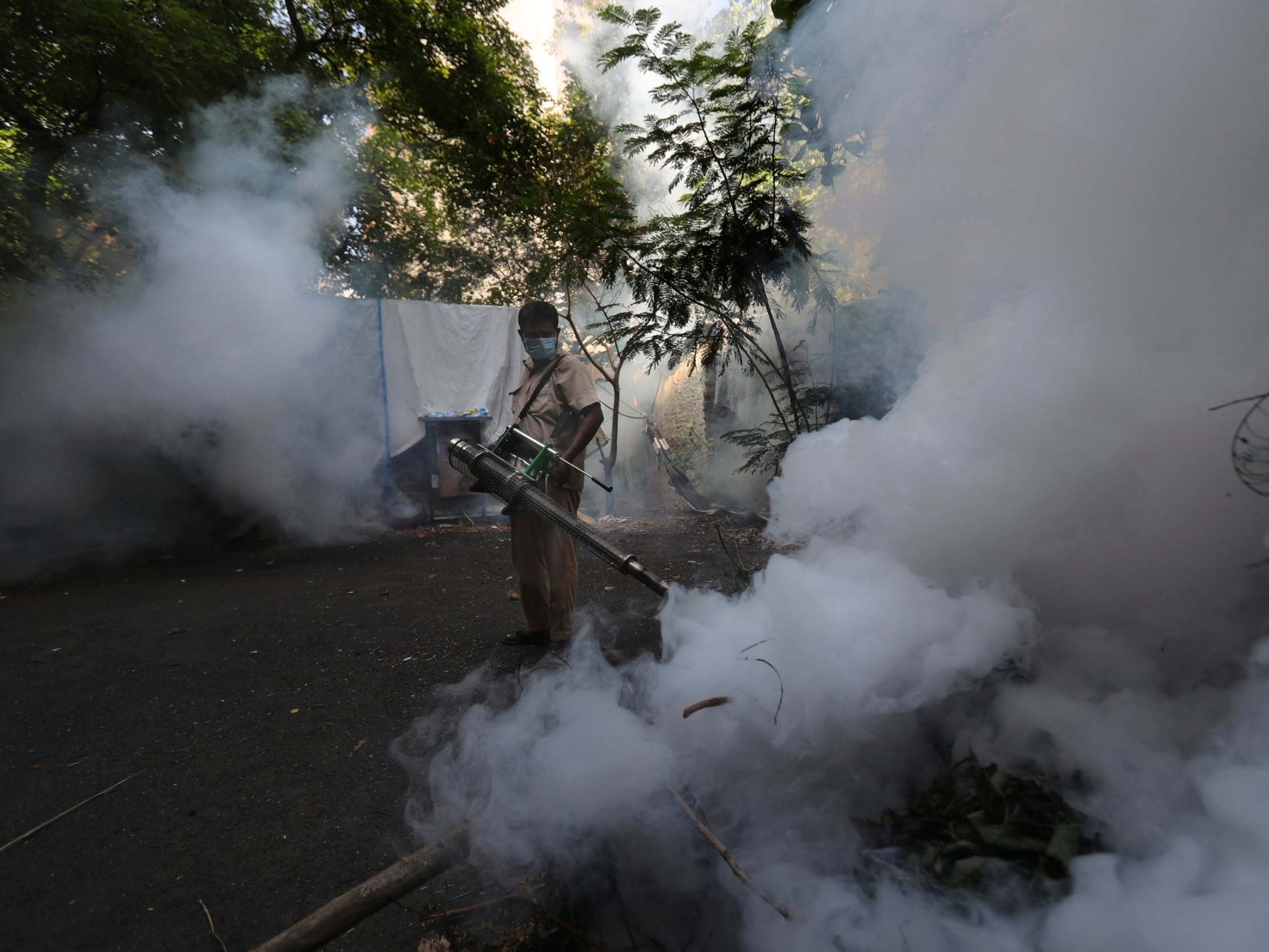 Photo of Coronavirus hampering dengue prevention in Latin America and South A… | The Independent