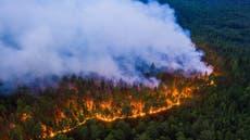 Summer 2020 Arctic wildfires break emissions records