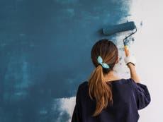 Lockdown DIY boom saw sales of paint, wallpaper and plants soar