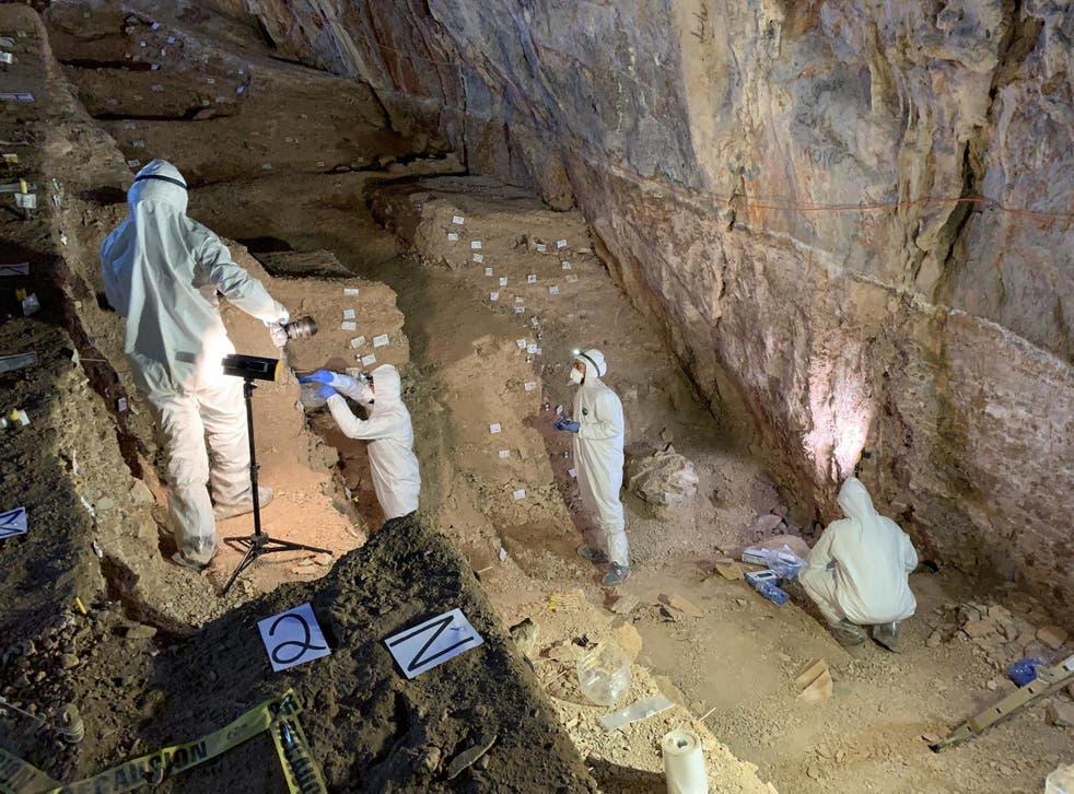 Científicos y arqueólogos hicieron el histórico descubrimiento en una cueva en el estado de Zacatecas,