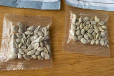 Mysterious packages of seeds from China spark warnings in US
